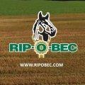 Emplois chez RIP-O-BEC